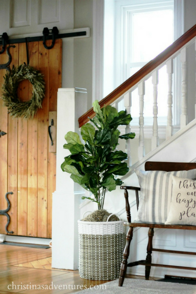 adding plants to your interior design